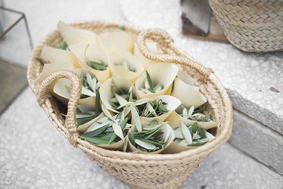 hojas de olivo para bodas